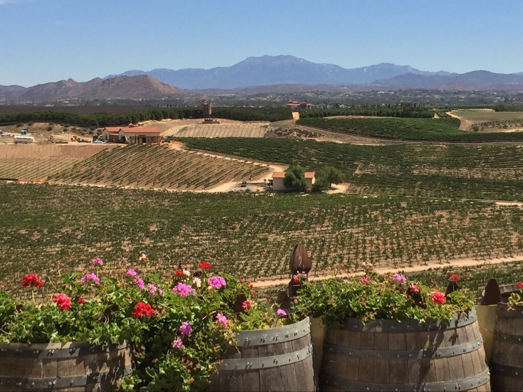 Temecula Valley Wine Country